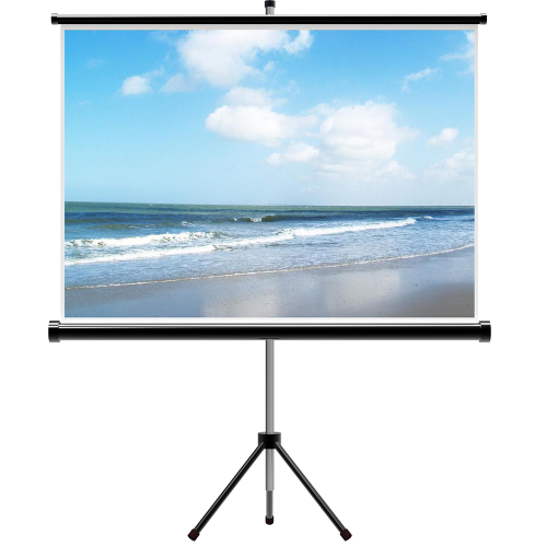 Projector Screen with Tripod